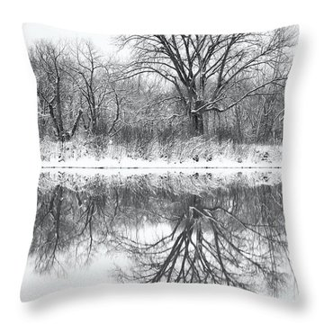 Throw Pillow featuring the photograph Bare Trees by Darren White