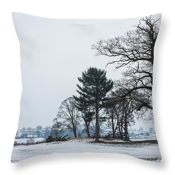 Bare Trees In The Snow Throw Pillow