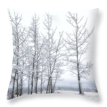 Bare Trees In Winter Throw Pillow