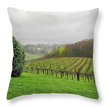 Bare Vineyard Throw Pillow
