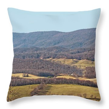 Bare Winter Throw Pillow by Denise Romano