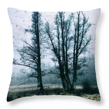 Bare Winter Trees Throw Pillow by Karen Stahlros