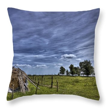 Barefoot Country Throw Pillow