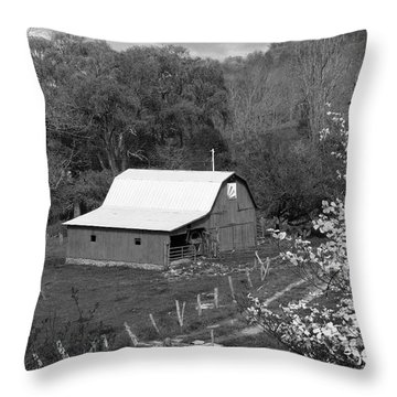 Throw Pillow featuring the photograph Barn 3 by Mike McGlothlen