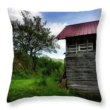 Throw Pillow featuring the photograph Barn After Rain by Greg Mimbs