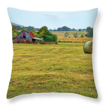 Barn And Field Throw Pillow