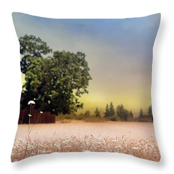 Throw Pillow featuring the photograph Barn And Lace by Rebecca Cozart