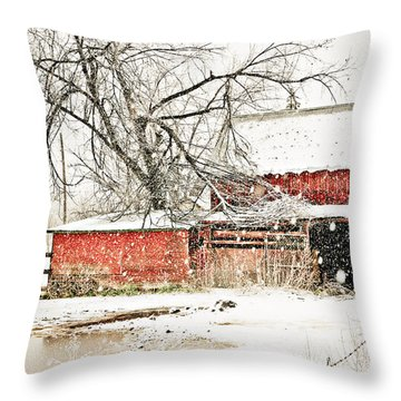 Barn And Pond Throw Pillow by Marilyn Hunt