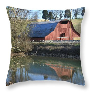 Barn And Reflections Throw Pillow