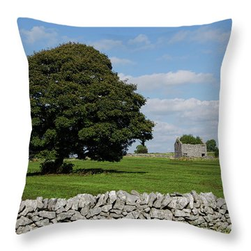 Barn And Tree Throw Pillow by Steev Stamford