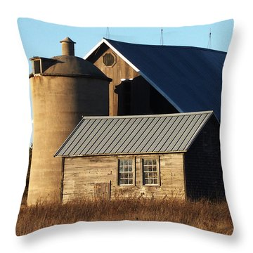 Barn At 57 And Q Throw Pillow