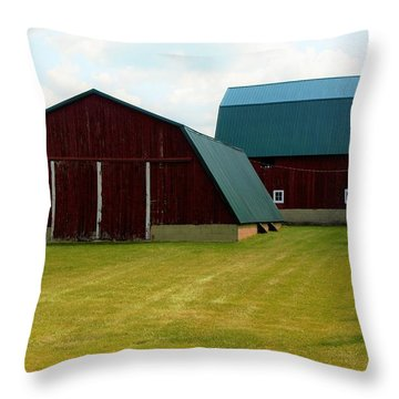 0004 - Barn Brothers Throw Pillow