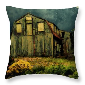 Barn By The Beach Throw Pillow by RC deWinter