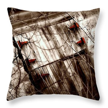 Barn Door Throw Pillow by Julie Hamilton