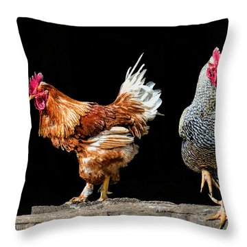 Barn Door Throw Pillow