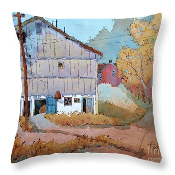 Barn Door Whimsy Throw Pillow