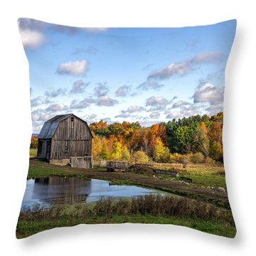 Throw Pillow featuring the photograph Barn In Autumn by Mark Papke