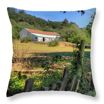 Barn In Big Sur Throw Pillow
