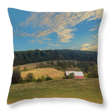 Barn In Field Throw Pillow