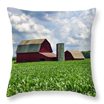 Barn In The Corn Throw Pillow