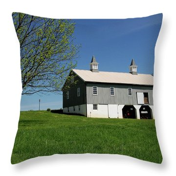 Barn In The Country - Bayonet Farm Throw Pillow