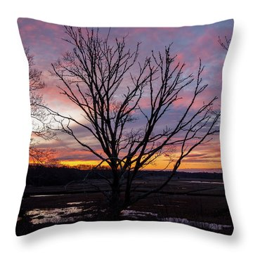 Throw Pillow featuring the photograph Barn Island - Pawcatuck Ct by Kirkodd Photography Of New England