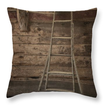 Barn Ladder Throw Pillow