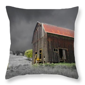 Barn Life Throw Pillow