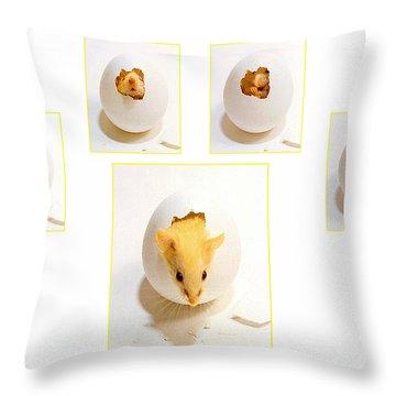 Barn Mouse Throw Pillow