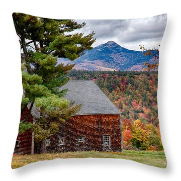 Barn Number Three Throw Pillow