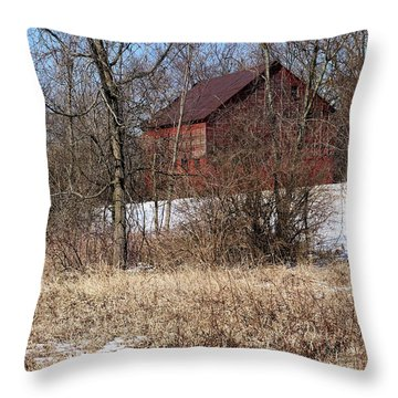 Throw Pillow featuring the photograph Barn On The Edge Of Town by Scott Kingery
