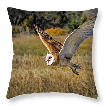 Barn Owl Flight 6 Throw Pillow