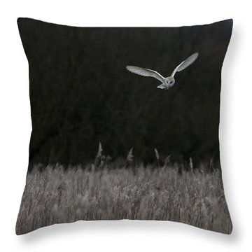 Barn Owl Hunting At Dusk Throw Pillow