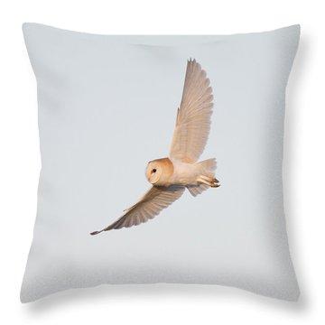 Barn Owl Hunting Throw Pillow