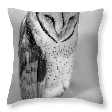 Barn Owl II Throw Pillow