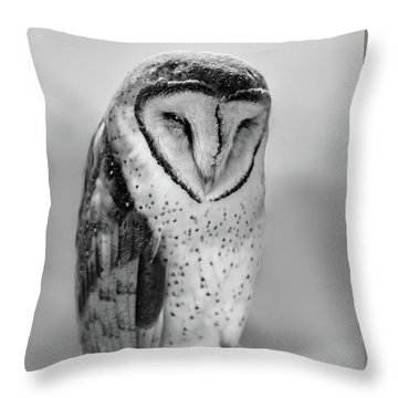 Barn Owl II Throw Pillow