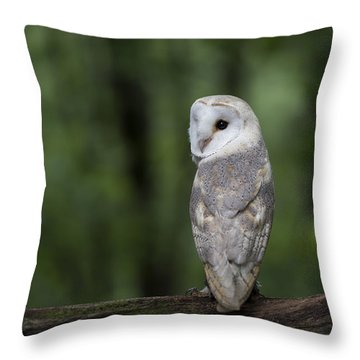 Barn Owl In The Woods 2 Throw Pillow