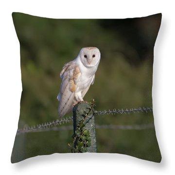 Barn Owl On Ivy Post Throw Pillow