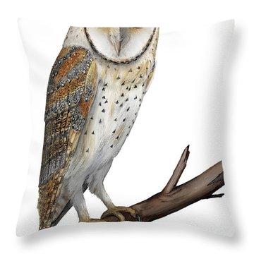 Barn Owl Screech Owl Tyto Alba - Effraie Des Clochers- Lechuza Comun- Tornuggla - Nationalpark Eifel Throw Pillow