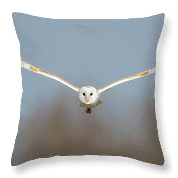 Barn Owl Sculthorpe Moor Throw Pillow