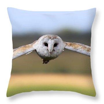 Barn Owl Swoop Throw Pillow