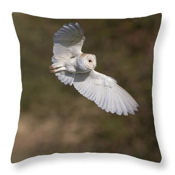 Barn Owl Wings Throw Pillow