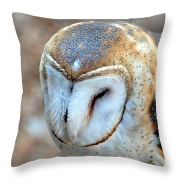 Barn Owle 1 Throw Pillow by Marty Koch