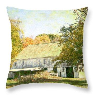 Barn Still Standing Throw Pillow