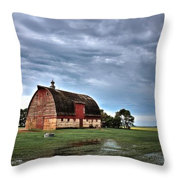 Barn Storming Throw Pillow