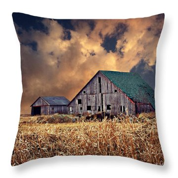 Barn Surrounded With Beauty Throw Pillow by Kathy M Krause