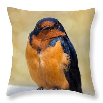 Barn Swallow Throw Pillow by David Gn