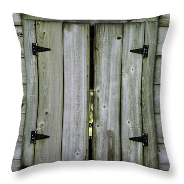 Barn Window, In Color Throw Pillow