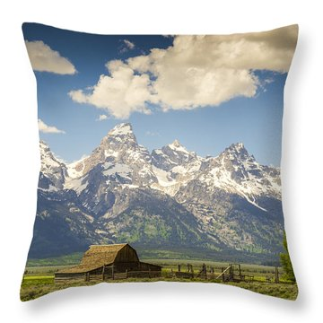 Barn With A View Throw Pillow