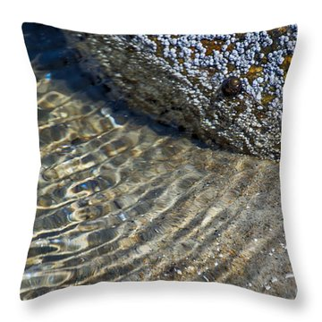Barnacles And Reflection Throw Pillow